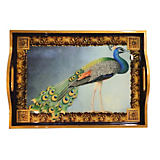 Annie Modica Peacock Tray