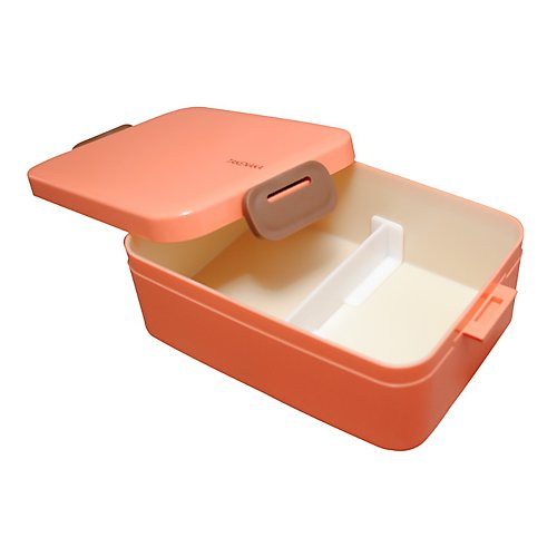Takenaka Bento-Box