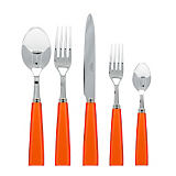 Sabre Natura 5 Piece Place Setting