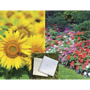 Set Of 2 Flower Seed Garden Mats
