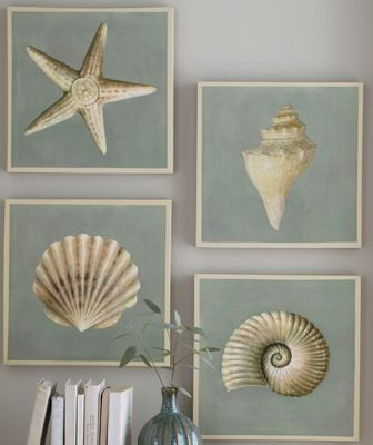 Set Of 4 Seashell Canvas Prints