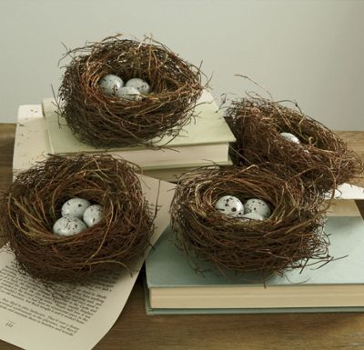 Bird Nest Quartet
