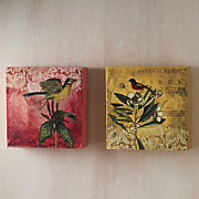 Set Of 2 Bird Canvases