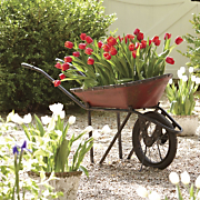 decorative garden wheelbarrow