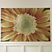 Hand Hooked Sunflower Rugs