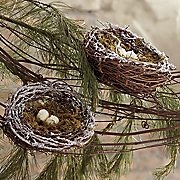 Set Of 2 Northwoods Nests