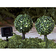 set of 2 solar topiary lights