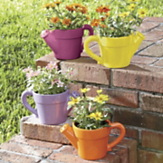 watering can flower pots