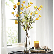 yellow poppies vase