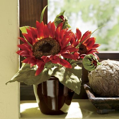 red sunflower floral