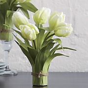 set of 2 tulip bundles