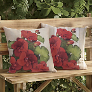 geranium pillow 31