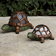 Set Of 2 Solar Turtle Lights