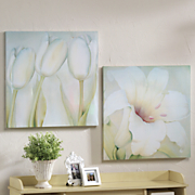 Canvases Set Of 2 Floral