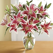 Stargazer Lilly Pink Wax Bouquet