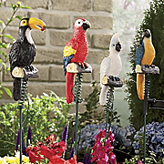 Solar Jungle Birds Set Of 4