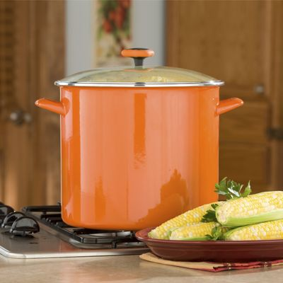 Rachael Ray 16 Quart Stockpot