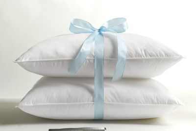 Egyptian Cotton Covered Pillows