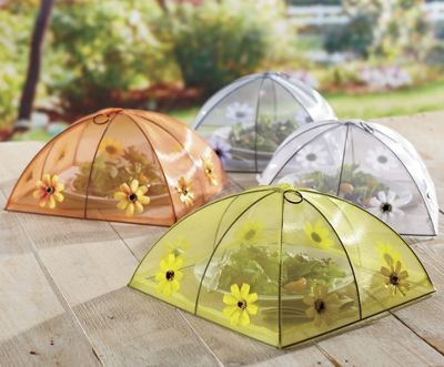 Domed Food Tent