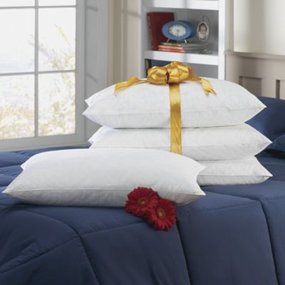 4 Piece Natural Down Pillow Set