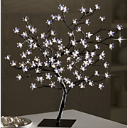 Bonsai Blossoms Tree