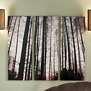 3 Piece Tree Canvas Set
