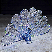 Dazzling Lighted Peacock