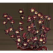 Lighted Plum Flower Bundle