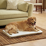 Large Heated Dog Bed