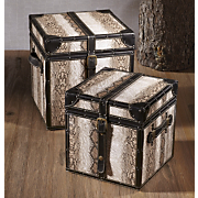 set of two snakeskin boxes
