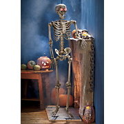 Lifesize Peeper Skeleton