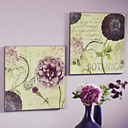 set of 2 flora and botanica wall art