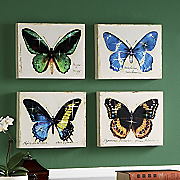 4 piece study in butterflies print set