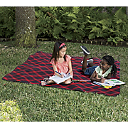 outdoor blanket with bag