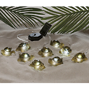 9 piece solar turtle light set