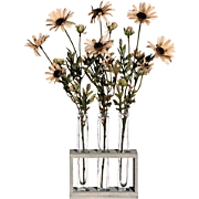 Daisy Tubes With Acrylic Water