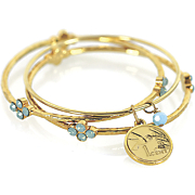 Hummingbird Coin Bangle Bracelet Set