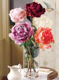 Drying Flowers Tip