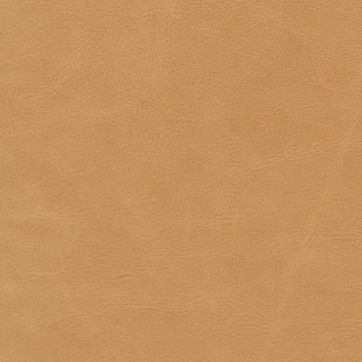 annata camel leather swatch