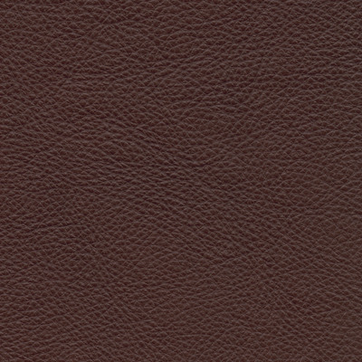 lecco bourbon leather swatch