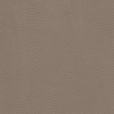 lecco pewter leather swatch