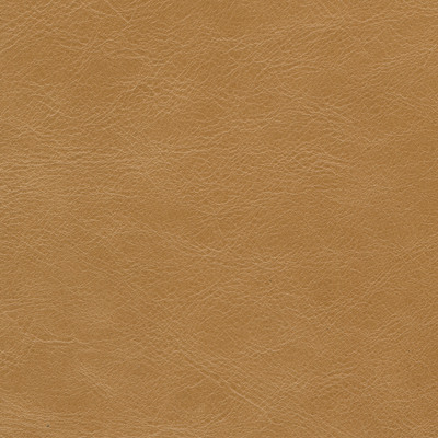 portofino cashew leather swatch