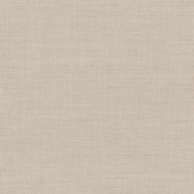 Sunbrella Canvas flax fabric