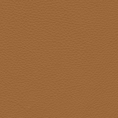 urbino camel leather swatch