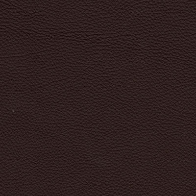 urbino espresso leather swatch