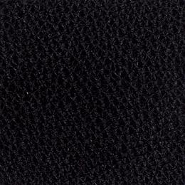 Bison black
