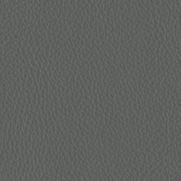 Prima grey
