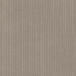 Sunbrella® Canvas taupe