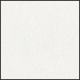 View white