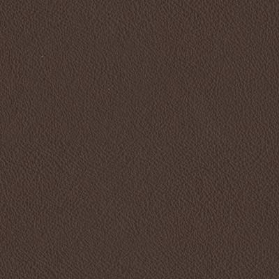 Cape dark brown